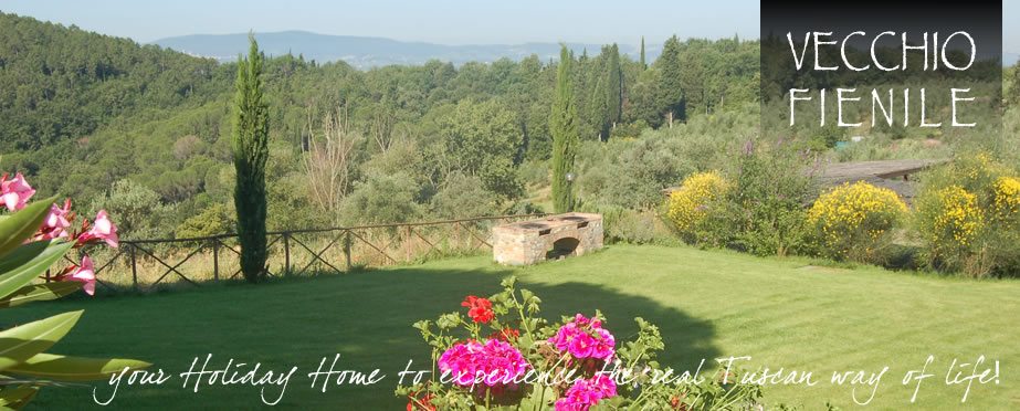 Holiday Houses near Siena and Florence: Vecchio Fienile and Bonorli