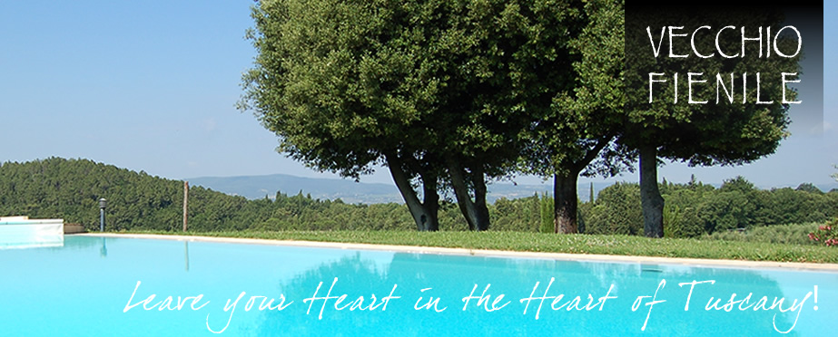 Holiday Home with Pool near Siena